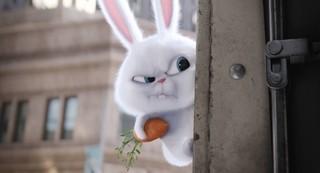"""さあ、行きますよ!""""フリーザ声優""""演じる悪ウサギと主人公が協力?「ペット」本編映像入手"""
