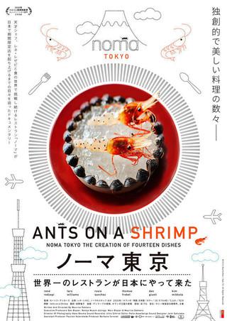 食用蟻など、珍しい食材が芸術な一皿に!「ノーマ東京 世界一のレストランが日本にやって来た」