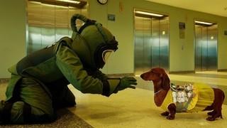 犬×アメリカ中の曲者?ブラックユーモア満載のトッド・ソロンズ監督最新作17年1月公開