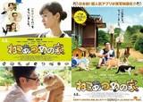 伊藤淳史がモフモフ猫まみれ!実写映画「ねこあつめ」ポスター2種完成