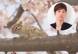 櫻井孝宏、UR賃貸住宅のPR動画で恋の歌を詠む知的なリスに