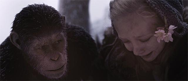 初登場1位「猿の惑星:聖戦記(グレート・ウォー)」