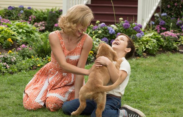 犬ベイリーのピュアな愛情が涙を誘う仕上がり