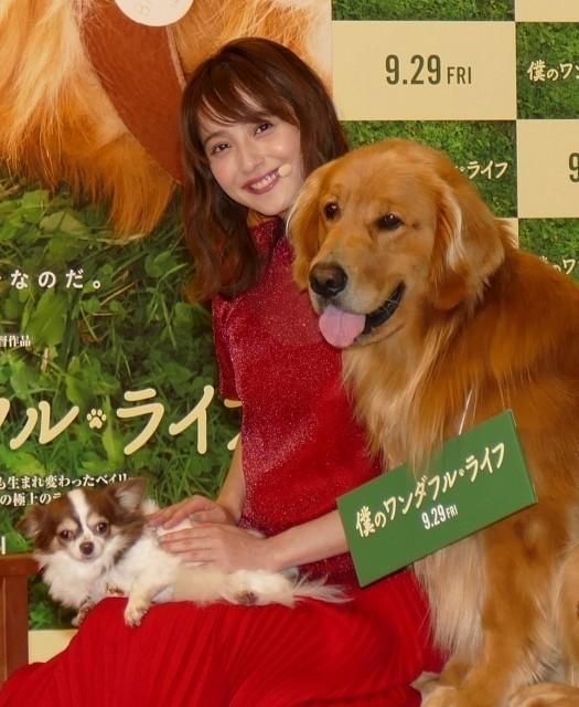 愛犬のマロンちゃん(写真左)と共に