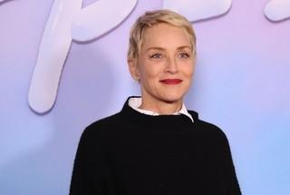 シャロン・ストーンがマフィア映画に主演 ノルウェー人女性監督の初英語作品
