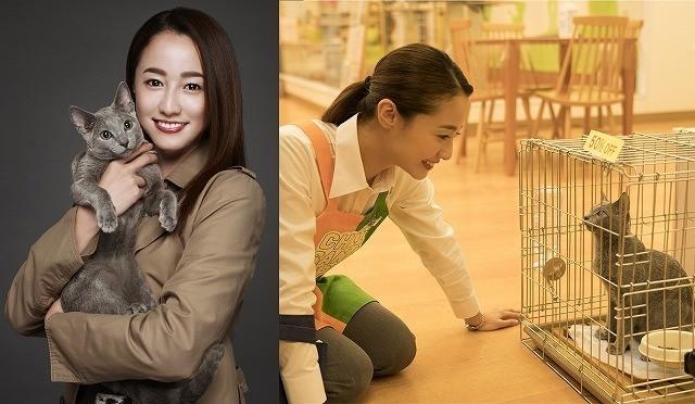 沢尻エリカ、犬童一心監督と初タッグ!「猫は抱くもの」は18年6月23日公開