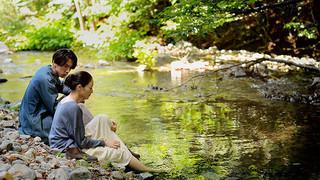 世界で10冠! 金子雅和監督「アルビノの木」凱旋&過去作特集上映が4月開催