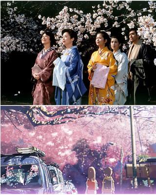 お花見シーズン到来! 桜が美しい名作映画