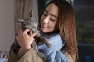 犬童監督、沢尻も喜びのコメント「猫は抱くもの」