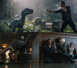 新たなハイブリッド恐竜も登場し、 進化したスリルが描かれる!「ジュラシック・ワールド 炎の王国」