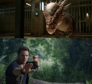 恐竜スティギモロクは 堅く巨大なドーム型の頭部が特徴的「ジュラシック・ワールド 炎の王国」