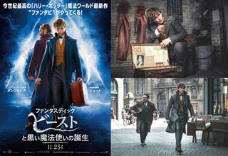 「ファンタビ」最新作、日本版予告編公開!ニフラーほか魔法動物も多数登場