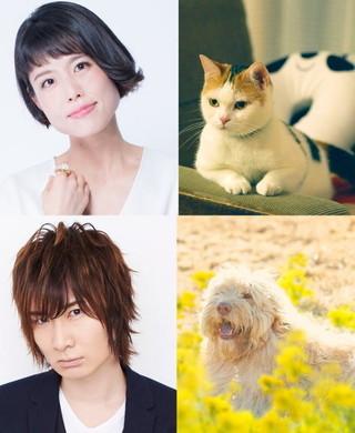 人気声優の沢城みゆきと前野智昭、「旅猫リポート」で猫と犬に!