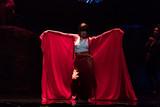 土屋太鳳、世界的ダンサーの辻本知彦と3度目タッグ 「累」で見せる妖艶ダンスシーン映像公開
