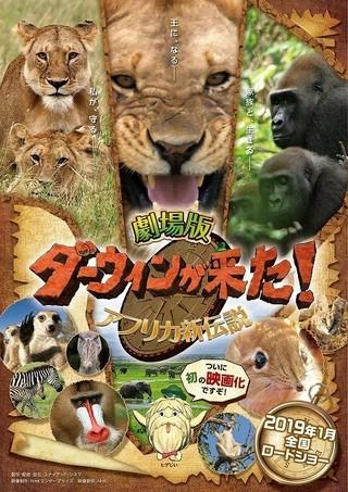 人気番組「ダーウィンが来た!」初映画化 アフリカが舞台の予告映像&ポスター公開