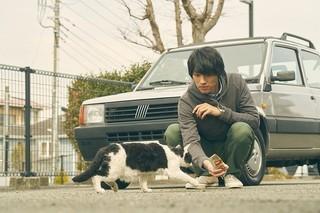 天才猫現る!?名演技を凝縮した「旅猫リポート」冒頭映像公開