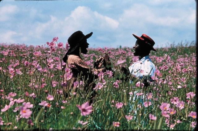 映画「カラーパープル」(1985)の一場面