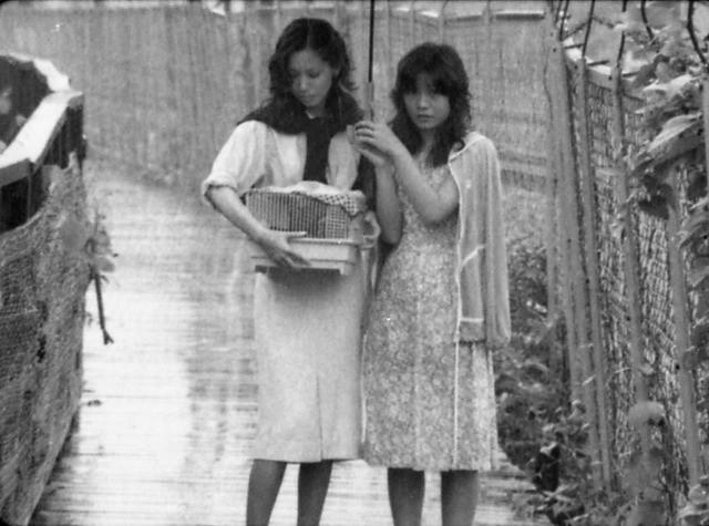 矢崎仁司監督デビュー作「風たちの午後」デジタルリマスター版の製作決定