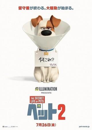 「ペット2」7月26日公開決定!不服そうなマックスとらえたポスターも披露