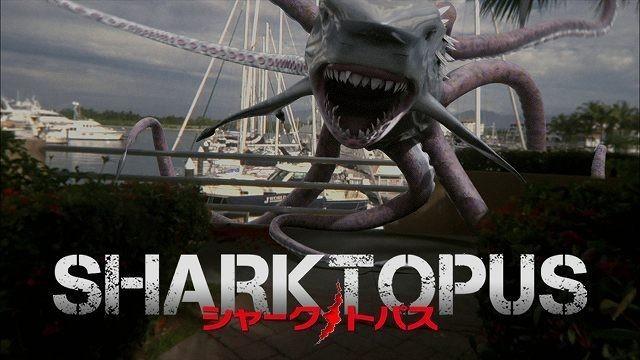 7月のOSOREZONEはサメ祭り!
