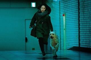 吉岡里帆が猟奇殺人鬼を追う「見えない目撃者」17歳シンガーの主題歌入り特別映像公開