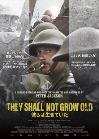 ピーター・ジャクソンが第一次世界大戦の記録映像を修復、着色、3D化したドキュメンタリーが1月公開