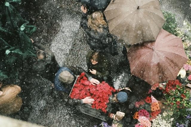 グザビエ・ドラン初の英語劇「ジョン・F・ドノヴァンの死と生」予告編&新ビジュアル - 画像8