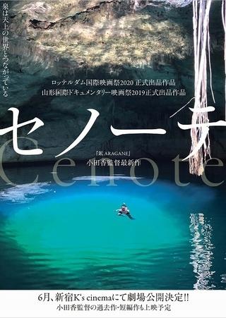 現世と黄泉の世界をつなぐ泉――タル・ベーラの愛弟子、小田香監督の新作「セノーテ」6月公開