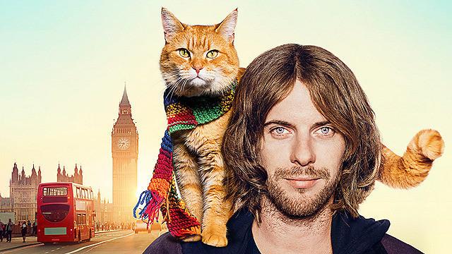 「ボブという名の猫 幸せのハイタッチ」
