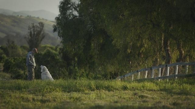 """自然を愛する夫婦が挑む""""究極の農場""""づくり 「ビッグ・リトル・ファーム」監督に聞く - 画像4"""