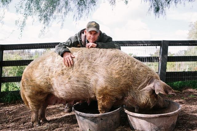 """自然を愛する夫婦が挑む""""究極の農場""""づくり 「ビッグ・リトル・ファーム」監督に聞く"""