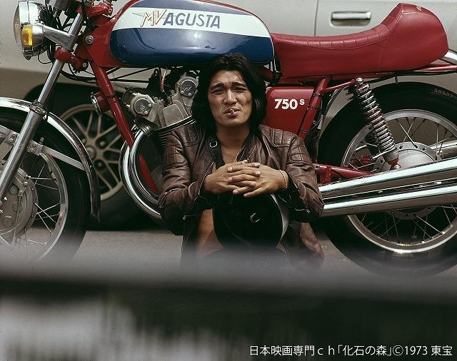 萩原健一さん出演作「雨のアムステルダム」「離婚しない女」「化石の森」5月に連続放送