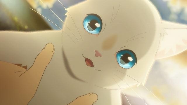「泣きたい私は猫をかぶる」劇場公開からNetflix配信へ切り替え 6月18日から - 画像3