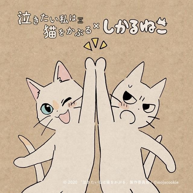 「しかるねこ」がNetflixアニメ「泣き猫」応援隊長に コラボイラスト公開