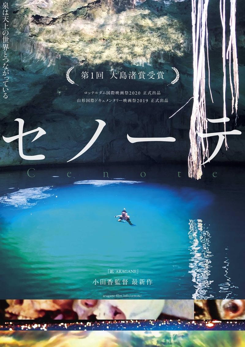 蓮実重彦、坂本龍一が絶賛 メキシコの泉の神秘を追うドキュメンタリー「セノーテ」予告編