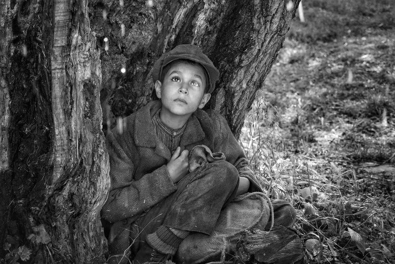 """発禁の書を映画化、""""悪魔""""と呼ばれた少年が人間の悪意に立ち向かう「異端の鳥」予告編"""