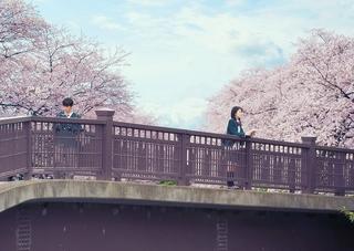浜辺美波×北村匠海「君の膵臓をたべたい」 金曜ロードSHOW!で9月4日放送決定