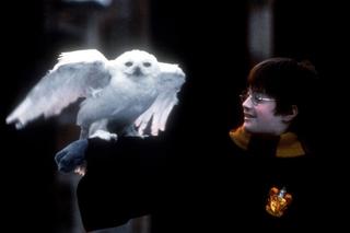 「ハリー・ポッターと賢者の石」中国での再上映で世界累計興収10億ドルを突破