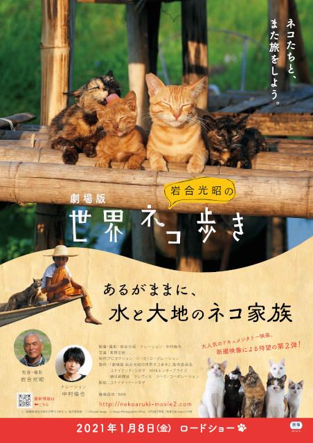 中村倫也、劇場版「岩合光昭の世界ネコ歩き」第2弾のナレーションを担当「ねこって飽きない」 - 画像2