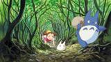 『となりのトトロ』(1988)スチール写真 宮崎駿 © 1988 Studio Ghibli
