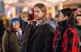 「ボブという名の猫」続編、21年公開! 青年とハンサムな茶トラ猫のクリスマスを描く