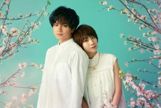 中島健人、Netflix映画「桜のような僕の恋人」に主演「26年の人生の最高傑作にしたい」