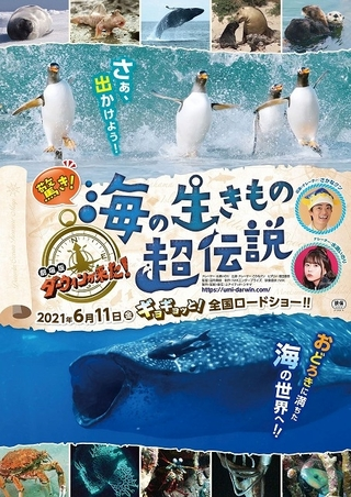 「ダーウィンが来た!」劇場版第3弾の舞台は海の世界! 水瀬いのり&さかなクンが参加、6月11日公開