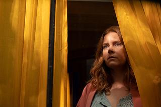 【「ウーマン・イン・ザ・ウィンドウ」評論】現実か幻覚か、「目撃」したことで追い詰められていく現代版「裏窓」