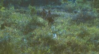 ジャングルで約30年生き抜いた小野田旧陸軍少尉を描く「ONODA(原題)」今秋公開 遠藤雄弥と津田寛治がダブル主演