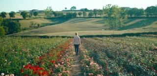 「ローズメイカー」監督が日本の映画ファンへメッセージ バラ園の季節の移ろい収めた本編映像も