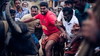 「90分のエクスタシー連続叩きつけ!」アリ・アスターが大興奮 インドの驚愕牛追い映画「ジャッリカットゥ 牛の怒り」予告編