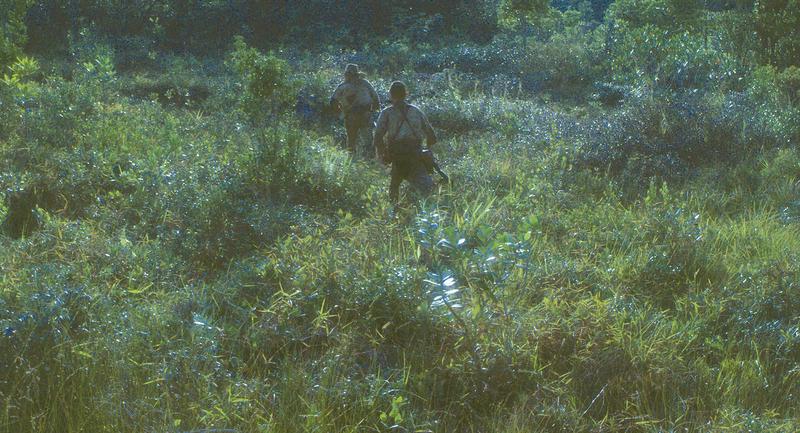 終戦後もジャングルで30年過ごした小野田寛郎さんの物語がカンヌ映画祭「ある視点」部門オープニング作品に