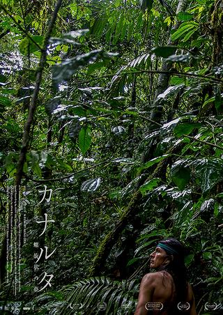 日本人監督がたったひとりでアマゾン奥地に住み込み撮影 神秘と未知の世界を映すドキュメンタリー「カナルタ 螺旋状の夢」
