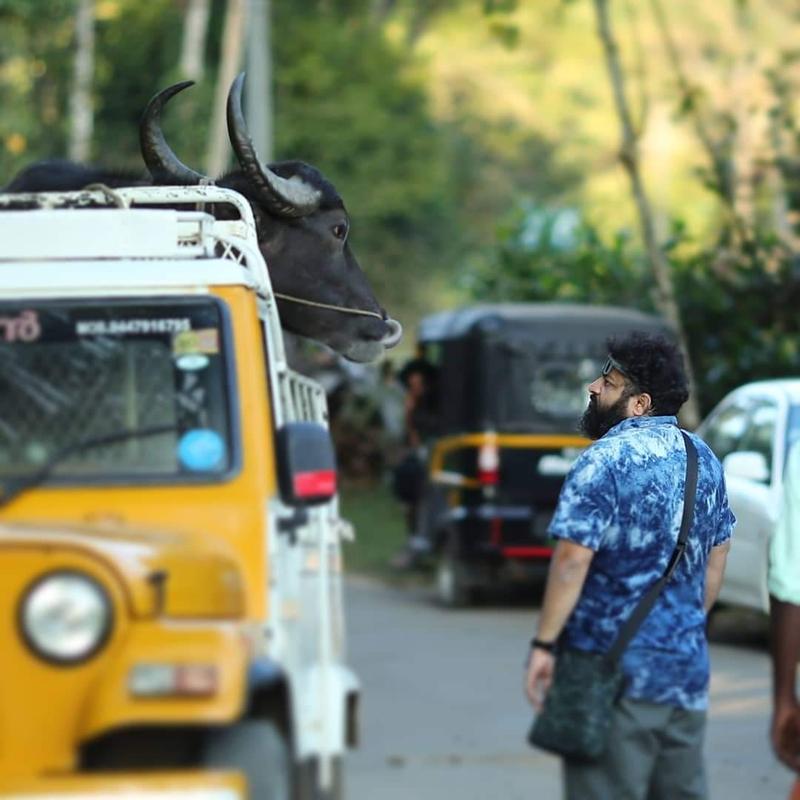 狂ったように牛を追う群衆シーンは黒澤明からの影響「ジャッリカットゥ 牛の怒り」南インドの鬼才に聞く